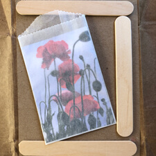 DIY flower seed packets with popsicle sticks
